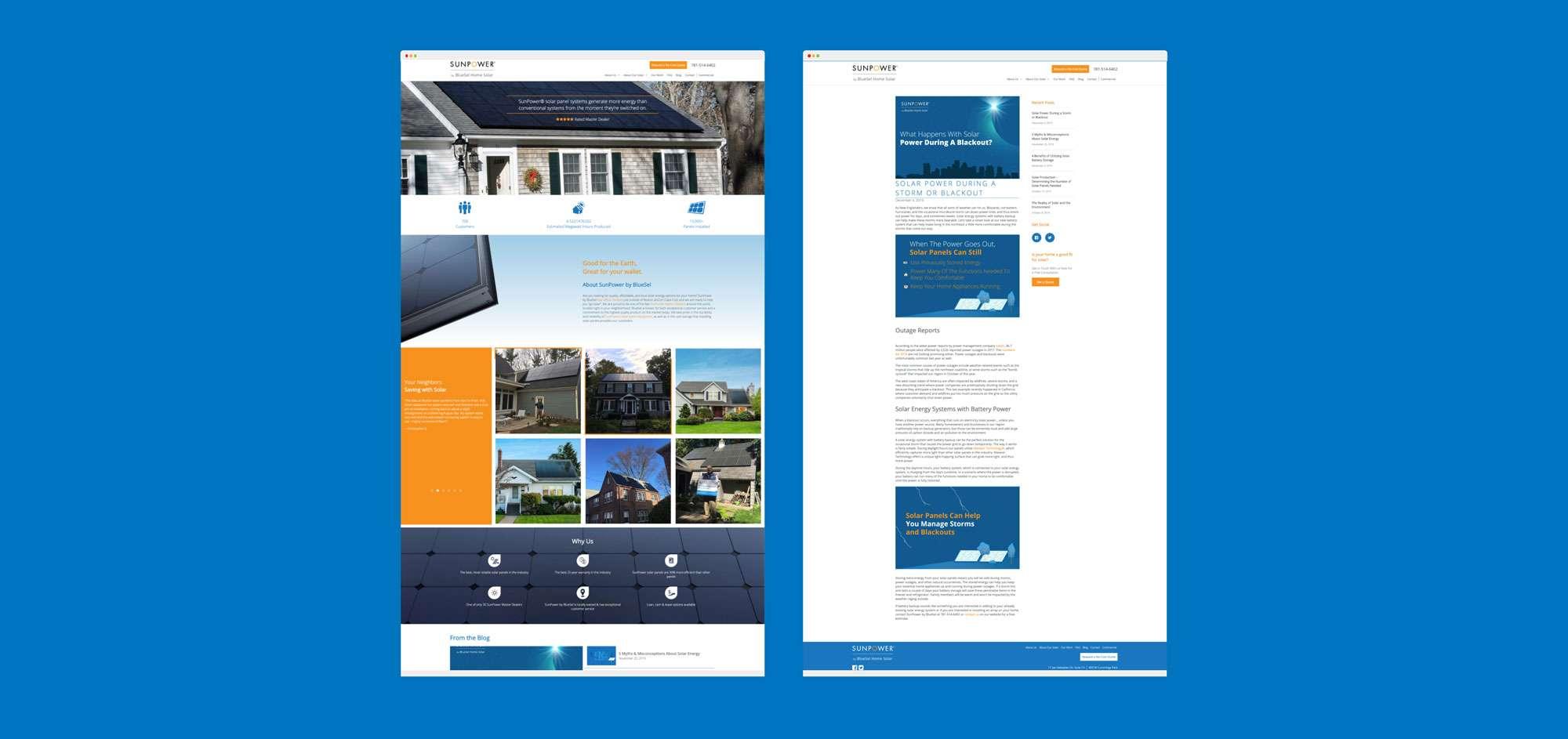 bluesel homepage mockups